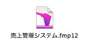 FileMakerアイコン
